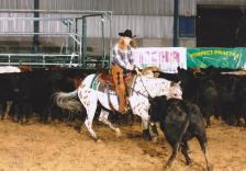 sunset-ranch-appaloosas-breeding Rocky 001