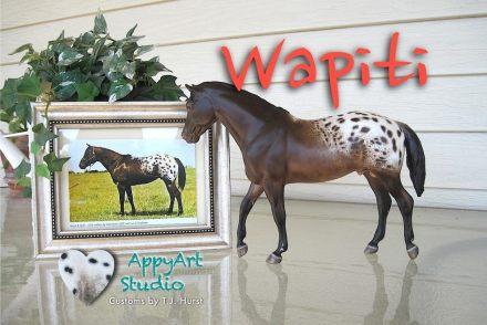 tj hurst appaloosa Wapiti model