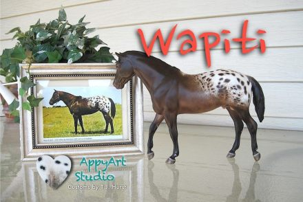 tj hurst appaloosa Wapiti model