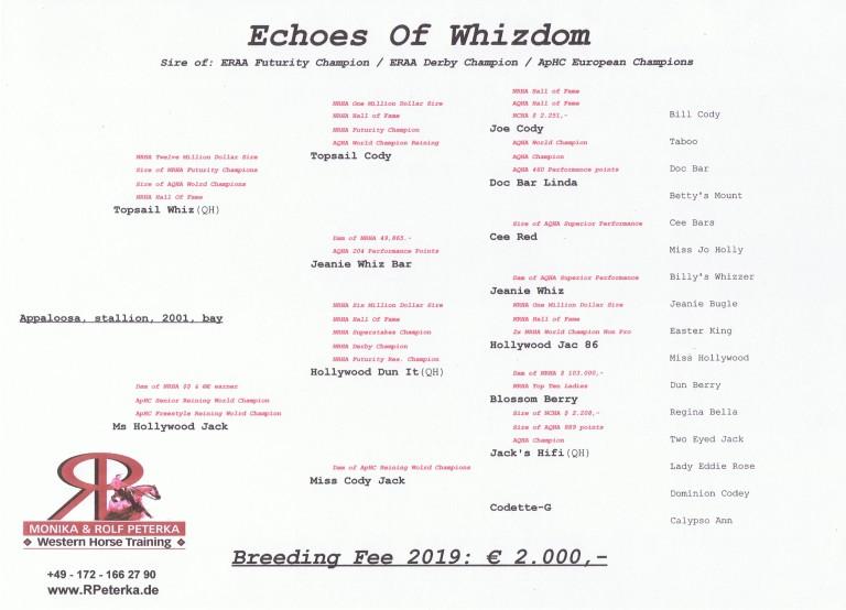germany-reining-appaloosa-stallion-at-stud-echoes-of-whizdom-2001 pedigree