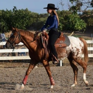 atechnicolordream-ra-appaloosa-colt-cover-saddled-e1537598456592